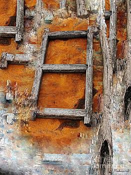The Ladder  by Makarand Purohit