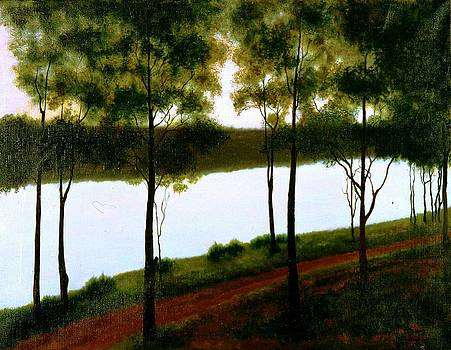 The lake after sunset  by Laila Awad Jamaleldin