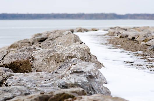The Lake by Debbie Patrizi