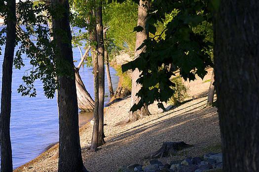 The Lakes edge by Danielle Allard