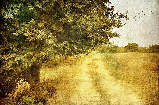 The Last Days of Summer by Sonya Kanelstrand