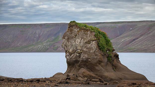 The last mohawk by Arnar B Gudjonsson