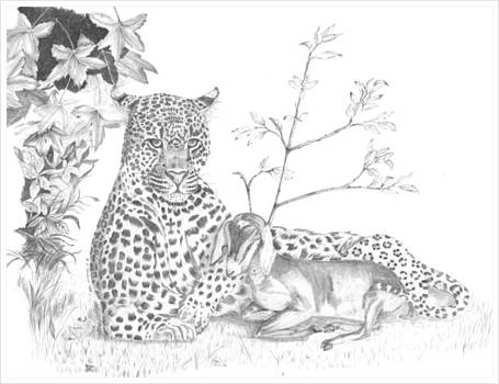 The Leopard and the Kid by Lloyd  Gardner