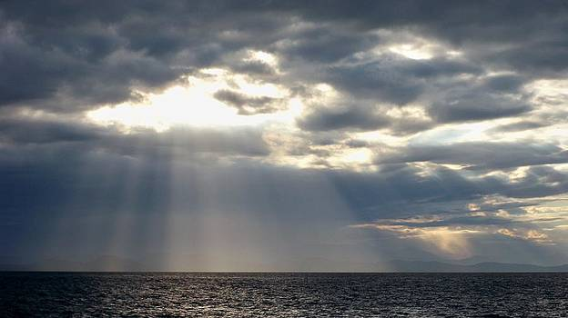The Light by A Cyaltsa Finkbonner