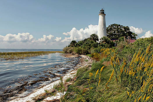 The Lighthouse at St. Marks by Lynn Jordan