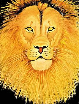 The Lion by Victoria Rhodehouse