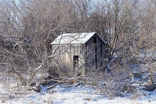 The Little Barn by Kristine Bogdanovich
