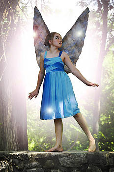 The Little Blue Fairy by Cherie Haines