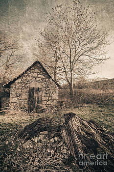 The little cottage behind the old stub II by Mandy Tabatt