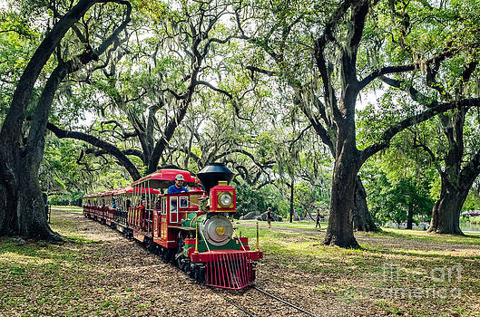 Kathleen K Parker - The Little Engine that Could - City Park New Orleans