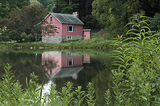 The Little Pink Cabin without ripples by Wayne Letsch