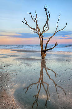 The Lonesome tree by JHR photo ART