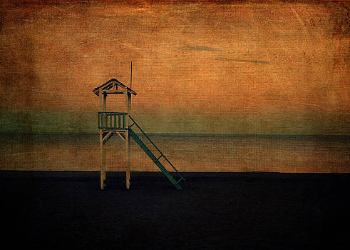 The Lookout by Sarah Vernon