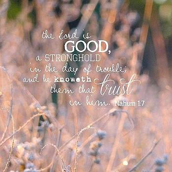 the Lord Is Good, A Stronghold In The by Traci Beeson