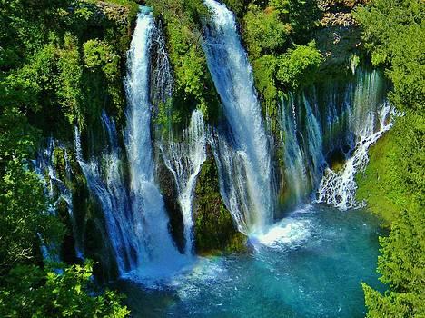 The Lost Falls by Deborah Knolle