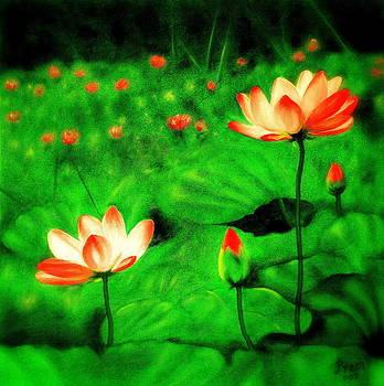 The Lotus Pond by Premkumar C N