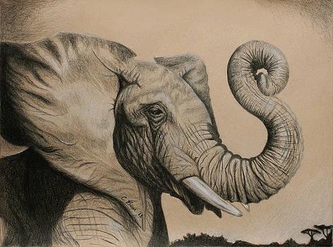 The Luckiest Elephant by Chelsea Blair
