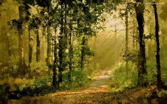 The Magic path by Denis Galkin