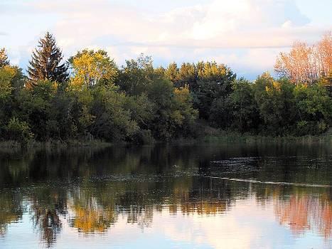 The Mill Pond by Gene Cyr