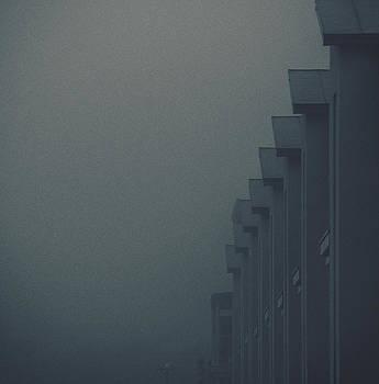 The Mist by Patrick Horgan
