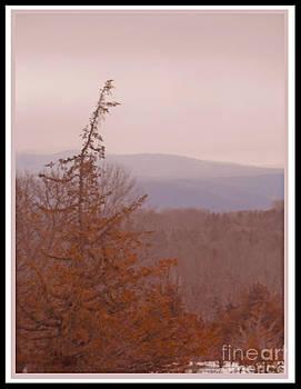 The Misty Mountains On A Misty Day by Patricia Keller
