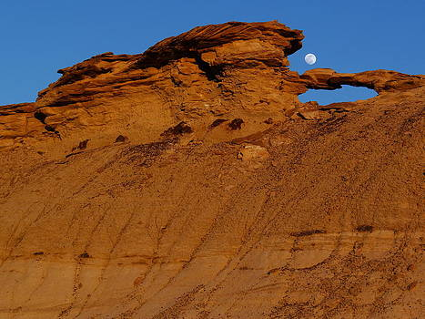 The Moon over the Badland by Qing Yang