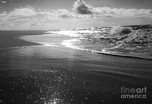 The Morning Beach by Garren Zanker
