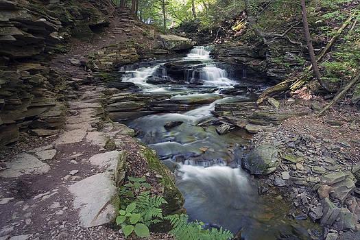 Gene Walls - The Narrows of Seneca Falls