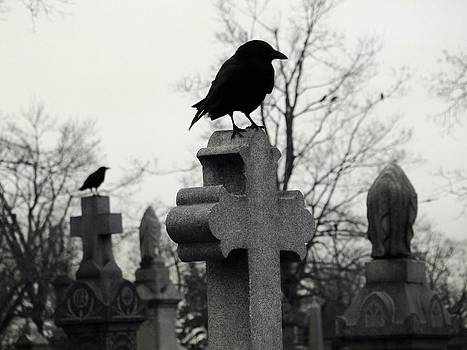 Gothicrow Images - The Nature Of A Graveyard
