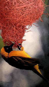 The Nest in Red by Prasida Yerra