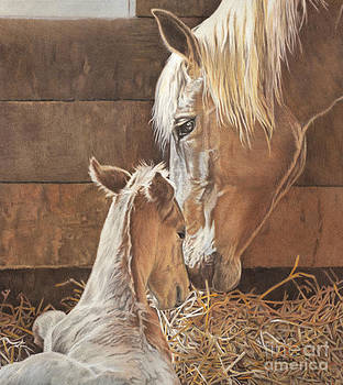 The New Arrival Is Here by Helen Bailey