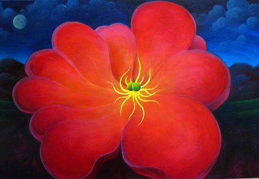 The Night Flower by Richard Dennis
