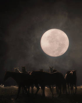 The Night Shift by Ron  McGinnis