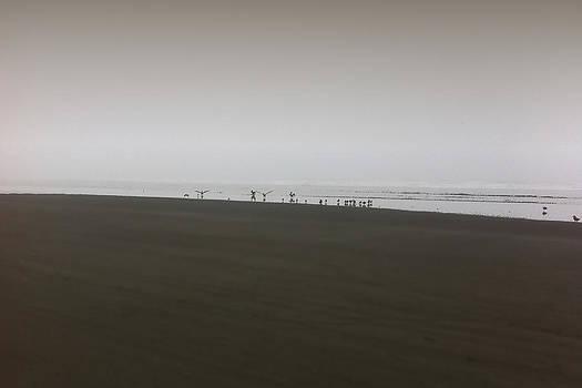 Marcello Cicchini - The No3 Ocean Shores