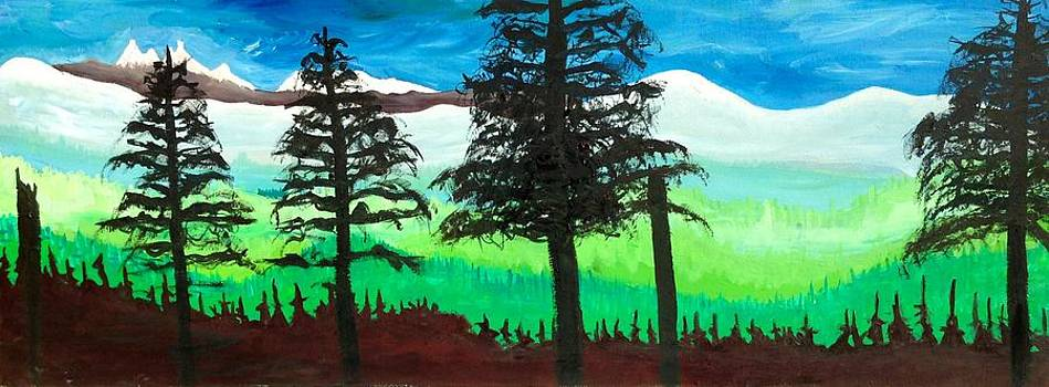 The Northwest Forest by Kendall Wishnick Adams