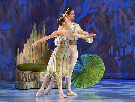 The Nutcracker ballet 14 by Cheryl Cencich