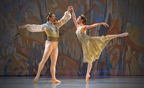 The Nutcracker Ballet 15 by Cheryl Cencich