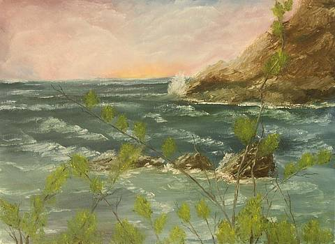 The Ocean View by Lou Magoncia
