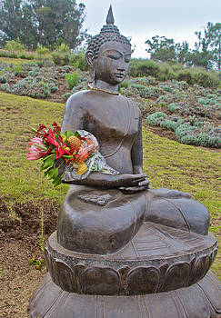Venetia Featherstone-Witty - The Offering To Buddha