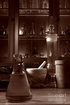 The Old Apothecary Shop by Olivier Le Queinec