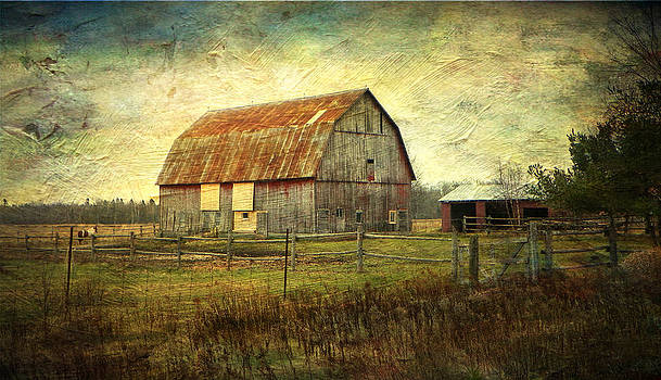 The Old Barn  by Dianne  Lacourciere