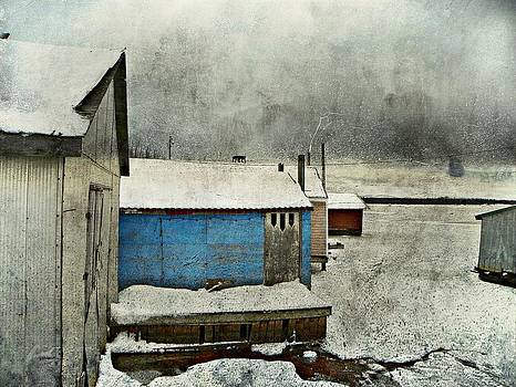 The Old Boathouses  by Dianne  Lacourciere