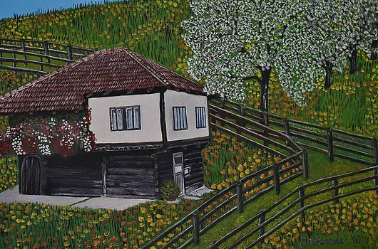 The old Bosnian house Krajiska by Ferid Jasarevic