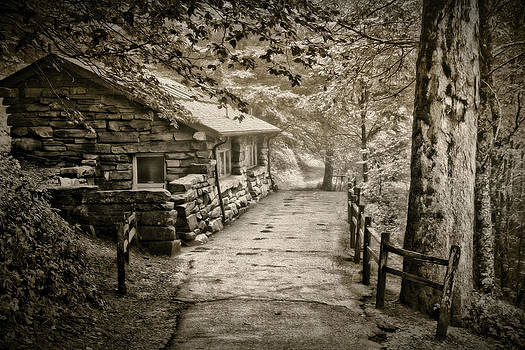 The Old Cabin in Sepia by Dale Conyers