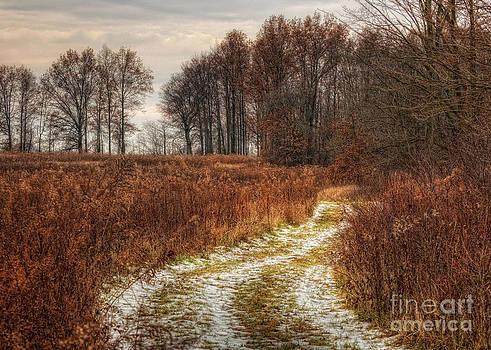 The Old Deer Path by Pamela Baker