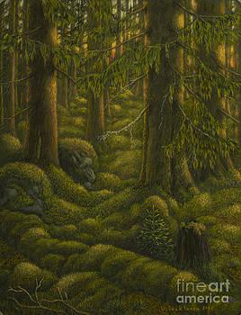 The old forest by Veikko Suikkanen