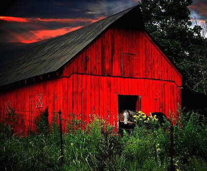 The Old Frederick Barn by Julie Dant