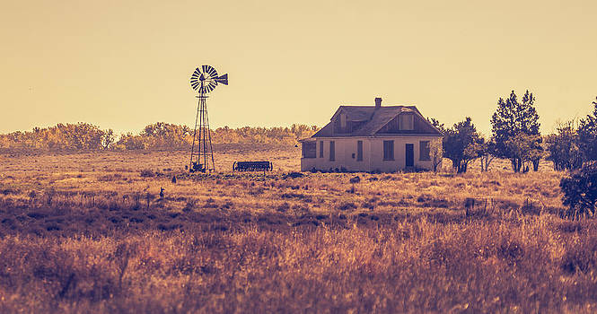The Old Homestead by Howard Weitzel