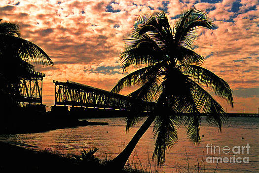 Susanne Van Hulst - The Old Rail Road Bridge in the Florida Keys