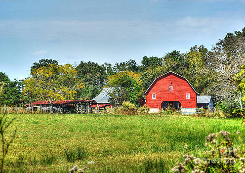The Old Red Barn by Kathy Baccari